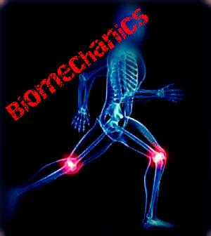 biomechanics-copy1