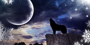 dark_moon_howling_wolf_by_taladarkiejj