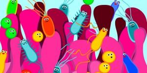 gutbacteria8