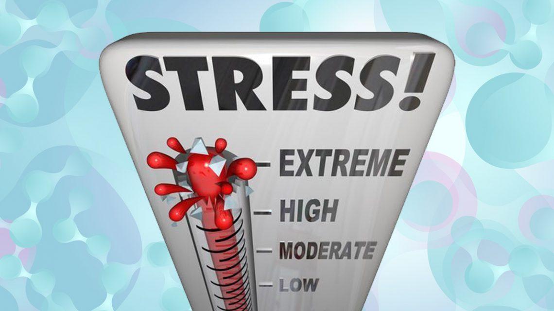Το άγχος αρρωσταίνει.. | Biology.gr